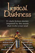 Lyrical Darkness 1